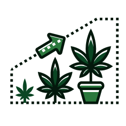 Icon_RP_Vegetative